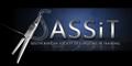 SASSIT Logo